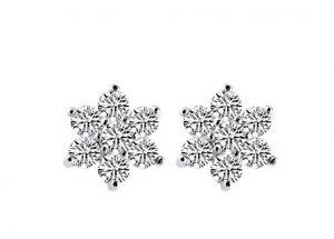 Oorknoppen Sneeuwkristallen
